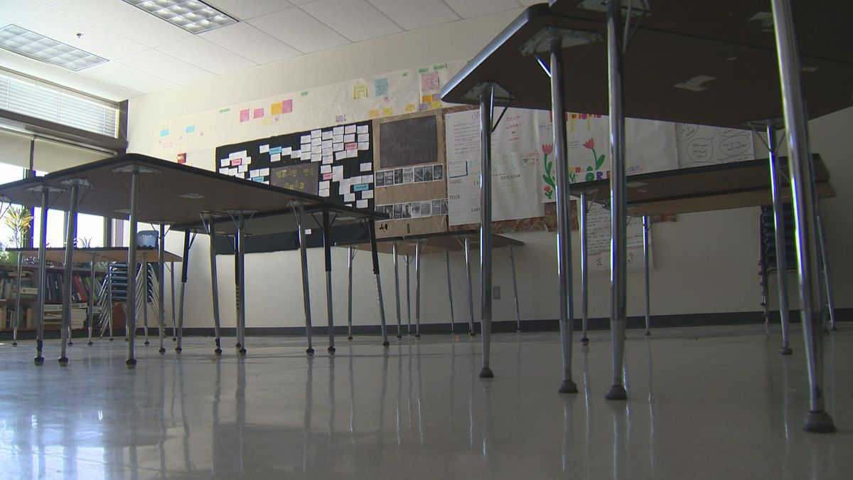 Pediatrician weigh in on kids heading back to schools in the fall.