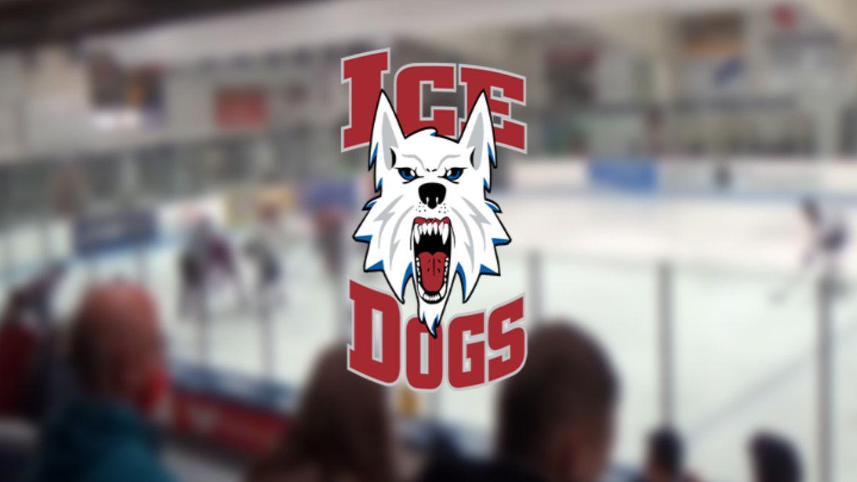 Fairbanks Ice Dogs logo