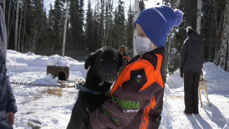 Jetty Lymburner, 7, gets a hug from a sled dog at Noble Paws Kennels Saturday afternoon.