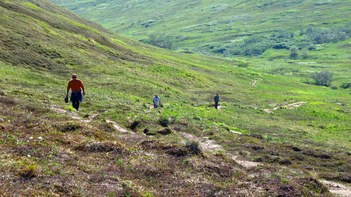 In this photo taken Wednesday, June 17, 2015, hikers explore a trail at Arctic Valley, nestled...