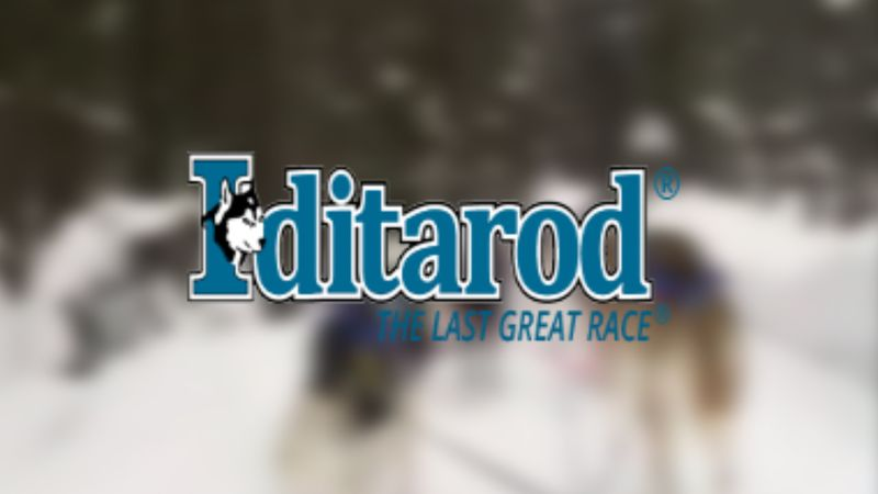 The 49th Iditarod begins Sunday in Deshka Landing.
