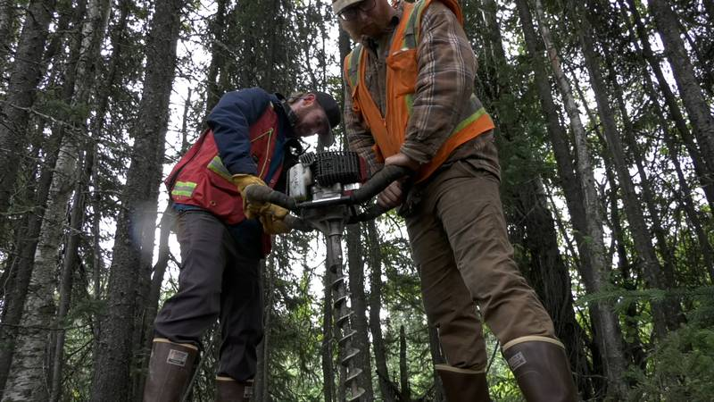 Two men working with Felix Gold demonstrate the auger used to take soil samples in the...