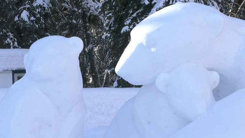 These bears are one example of Sue McGrew's snow carving work featured at Ice Alaska.
