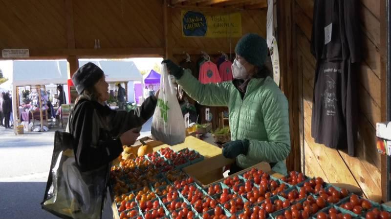 Fairbanks Farmer, Christine St. Pierre, sells produce at the Tanana Valley Farmer's Market...
