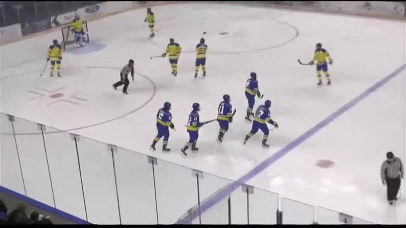 UAF Hockey Update