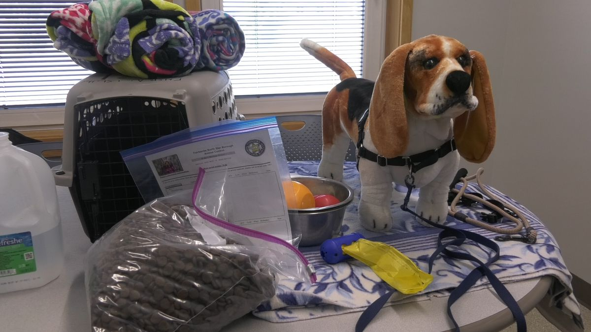 An example of some things that should be in a 'bug-out kit' for a dog. (John Dougherty/KTVF)