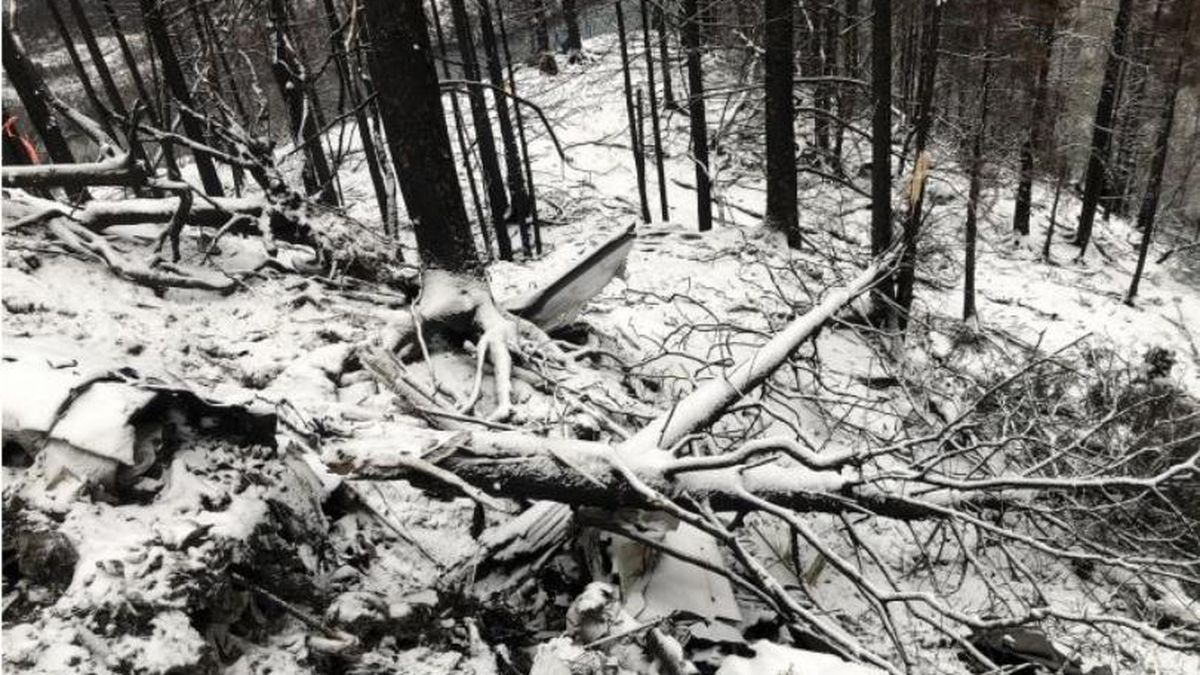 Broken trees at the site of the accident (Image from NTSB Preliminary Accident Report) (KTUU)