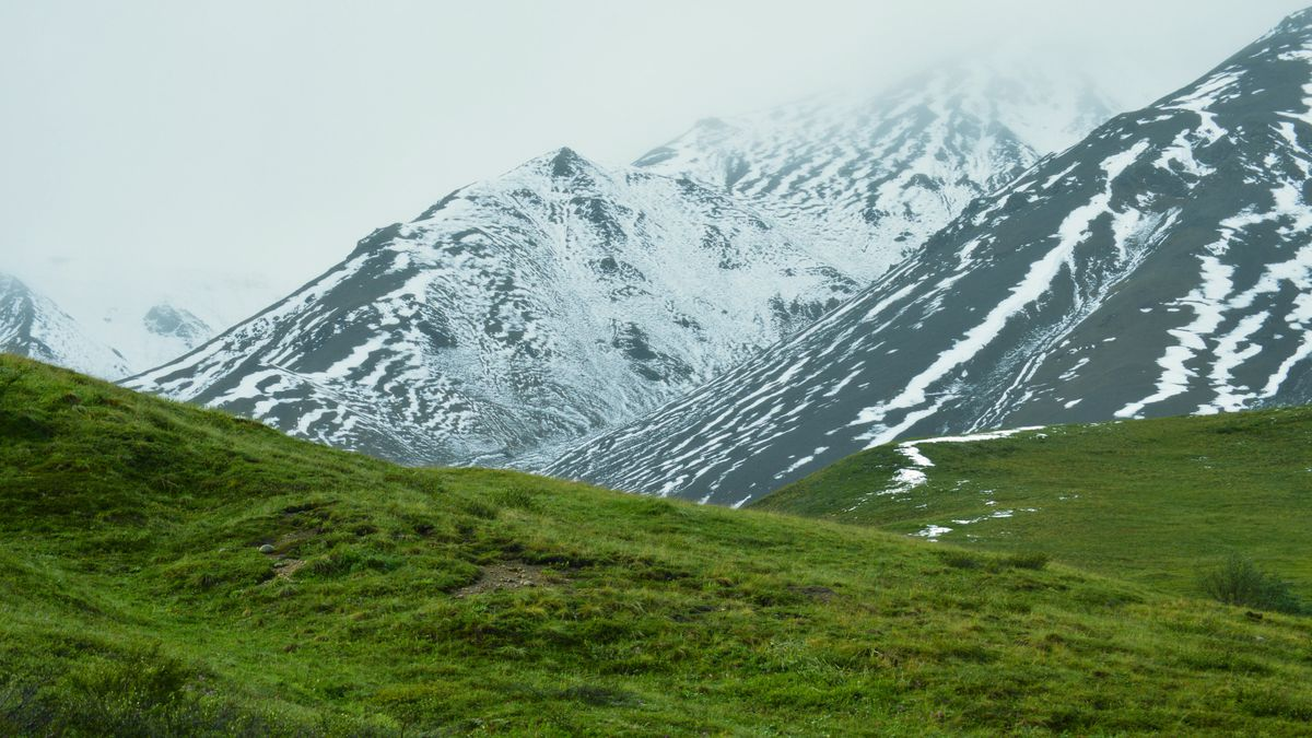 The Beauty of Denali National Park / Photo courtesy by Kelly Leavitt