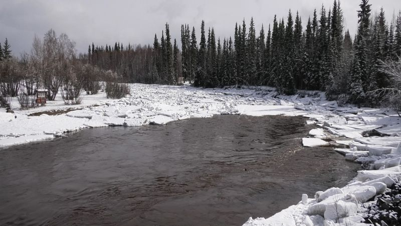 The Chena River is currently seeing an ice jam that runs at least a quarter mile up the river.