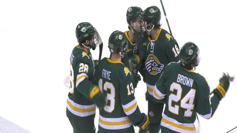 The Anchorage Seawolves celebrate after scoring in Game 3 of the Governors' Cup against the...
