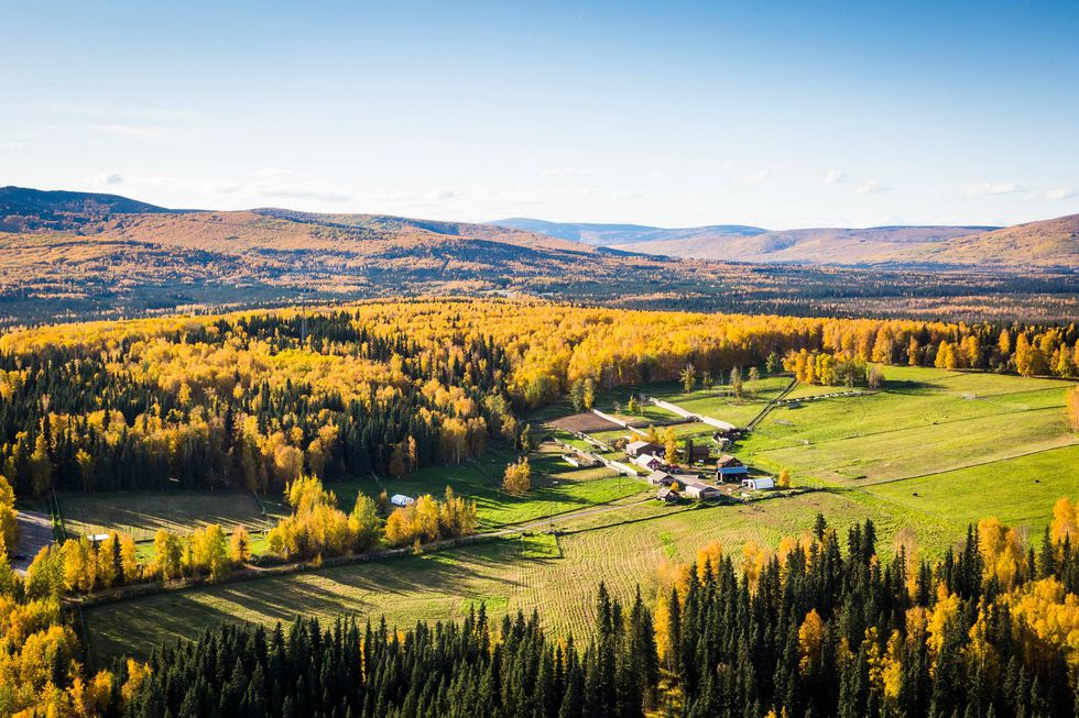 The large reserve, composed of a mix of open pasture and boreal forest, provides ideal...