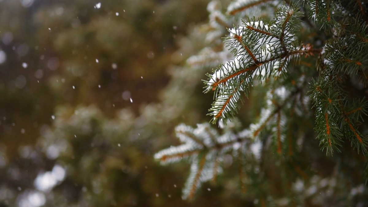 October 19th brings the first snow